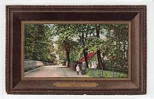 THE AVENUE, KILWINNING ROAD, IRVINE: Ayrshire postcard (C22274)