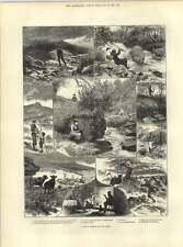 1883 el día de pesca en el Río Teign Wellington memoriales