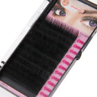 3D 0.1mm Volume Individual Black Tray Lash B/C/D/J Curl False Eyelash Extensions