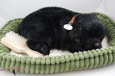 Black Lab Life Like Stuffed Animal Breathing Dog Perfect Petzzz