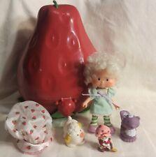 Vintage Strawberry Shortcake Case Angel Cake Doll Animals Accessories 1980s Lot