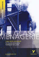 The Glass Menagerie: York Notes Advanced by Rebecca Warren (Paperback, 2003)