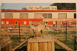 New Jersey Hope Land Make Believe Little Billy Goat Old MacDonald Farm Postcard