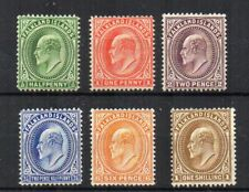 Falkland Islands 1904-12 values to 1s MLH/MH