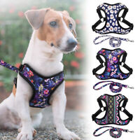 Reflective Dog Harness and Lead Set Floral Vest for Medium Large Breeds Labrador