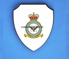 ROYAL AIR FORCE CENTRE OF AVIATION MEDICINE WALL SHIELD (FULL COLOUR)