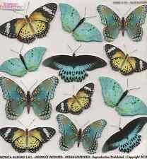 Sospeso Trasparente 3D Decoupage Blue Butterfly Printed Film