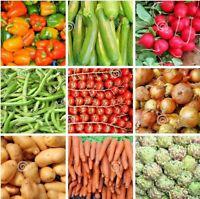 #8 Heirloom Vegetable Seeds 6 Variety Garden Set Emergency Survival NON-GMO 150+