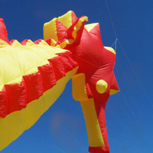 Seahorse Kite, 16 ft Long, Includes Stuff Bag  from Funwithwind - 21-3246B