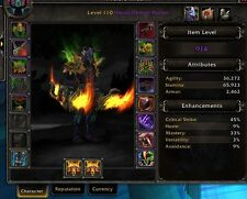Level 110 Demon Hunter 914 Item level 9 legendaries BiS gea. Ready for raiding.