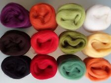60g Pure Wool Tops for Felting Set 12 Colours a