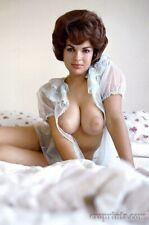 TONI ANN THOMAS Pinup YEAR 1963 Premier H.Q Glossy Photo Print 8x10 No 19