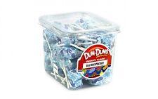 Dum Dum Pops Blue Raspberry Flavor TWO Big 1 Lb Tubs! Lollipop Candy Dum Dums