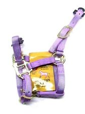 Hamilton premium nylon  lavender foal size (100-200 lbs) halter horse tack