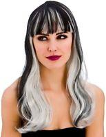 Adult Ladies Dark Fantasy Black & Silver Halloween Witch Fancy Dress Costume Wig
