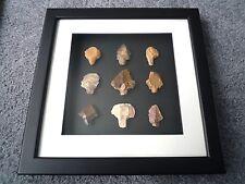 Paleolítica puntas de flecha en 3D Marco de foto, auténticos artefactos 70,000BC (T067)
