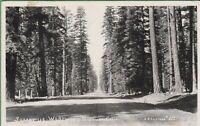 Vintage Postcard California CA RPPC 1946 Susanville Westwood Highway
