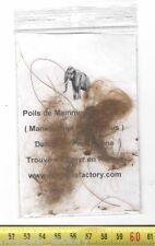veritable poils de Mammouth laineux ( 005 )