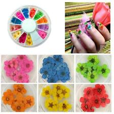 36pcs  Dried Tips Diy 3d Flower Decoration Nail Art Sticker