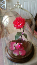 Enchanted Rose Beauty And The Beast Rose Glass Dome Beasts Rose