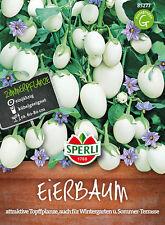 """Sperli - Eierbaum 85277 """" Fruta Comestible """" atractivo Planta en maceta"""