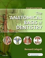 Anatomical Basis of Dentistry, Paperback by Liebgott, Bernard, Ph.D., Brand N...