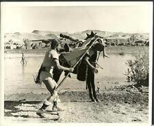 Stewart Granger Sodom and Gomorrah 1962 original movie photo 13645