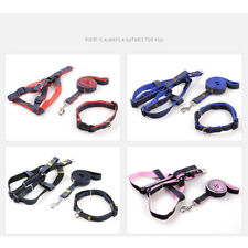 Fashion Dog Collar Safety Nylon Collars for Dogs Puppy with Buckle S M L XL