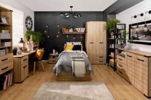 Modern wardrobe with soft close drawers and doors, loft style, Lara