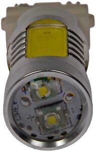 LED Back Up Light Bulb Rear/Front Dorman 3156W-HP