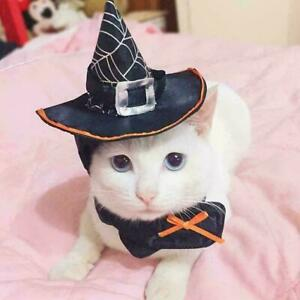 Halloween Cat Wizard Hat Products That Transform Into Hat Scarf Wizard O1V0 N0C5