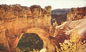 Natural Bridge Bryce Canyon National Park Utah Postcard