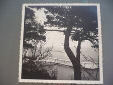 PHOTO 1939 BASTIA CORSE