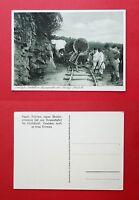 AK DEUTSCH OSTAFRIKA um 1935 Kleinbahn Lore Typen     ( 39747