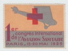 France Cinderella Air Show stamp 10-17-21- hinged gum - Airplane