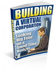 How To Get Virtual Corporation On A Small Budget & Make 6 Figure Busininess (CD)