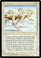 MtG x1 Formation Ice Age - Magic the Gathering Card