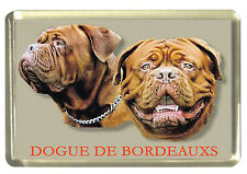 Bordeaux Dog Fridge Magnet, Dogue De Bordeaux