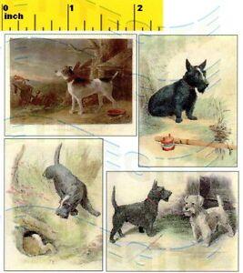 Miniature    VICTORIAN TERRIER DOG   Prints  1886 -  Dollhouse 1:12 scale