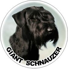 2 Giant Schnauzer Car Stickers By Starprint