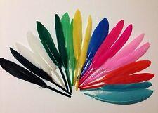 Piume indiani colorate feather PZ.20 colori a V/s Scelta Maschera Carnevale