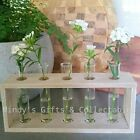Vintage Retro Style Set of 5 Glass Test Tube Vases in Timber Stand 30cm long