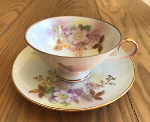 Vintage Schumann Arzberg Germany Bone China ~ Wild Rose ~Footed Tea Cup & Saucer