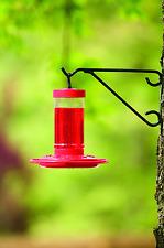 Bird Feeder - First Nature Hummingbird Birdfeeder 16oz