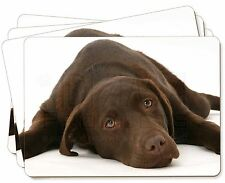 Chocolate Labrador Dog Picture Placemats in Gift Box, AD-L54P
