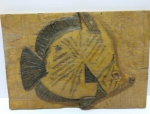 Carved Fish Wood Framed With Colors