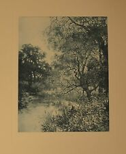 """The Meadow Brook"" Antique Photo Etching by W. Hamilton Gibson BEAUTIFUL!"
