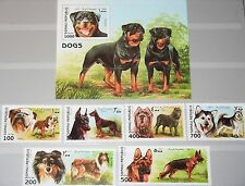SOMALI REPUBLIC 1997 unlisted set + Block Rassehunde Hunde Dogs Fauna Tiere MNH