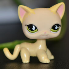 Littlest Pet Shop LPS Toys # 733 Short Hair Yellow Cat Green Eyes Christmas gift
