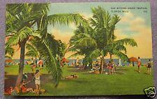 SUNBATHING UNDER TROPICAL FLORIDA SKIES 1941 POSTCARD